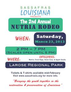 Nutria Rodeo Poster