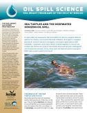 cover--sea-turtles_Page_1