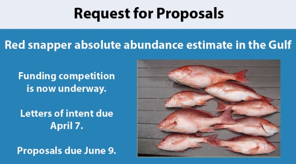 red snapper research proposal issued